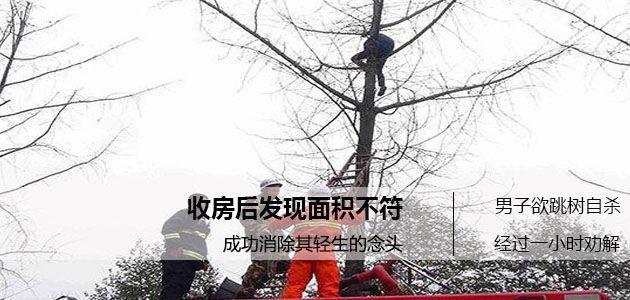 成都一男子收房后发现面积不符  爬树欲自杀