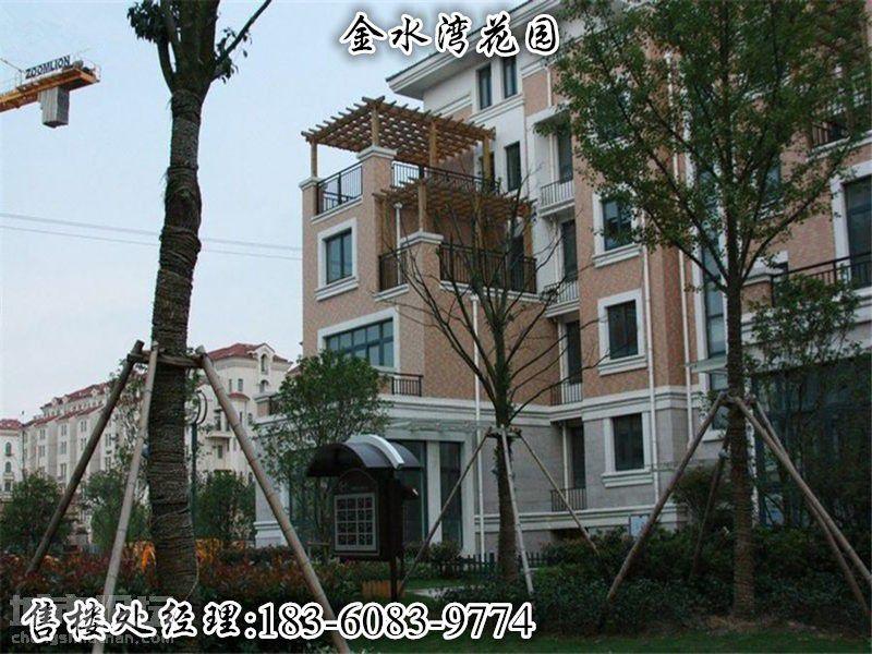 南通-【金水湾花园】售楼处——与绿叶为伍,与鸟雀为邻