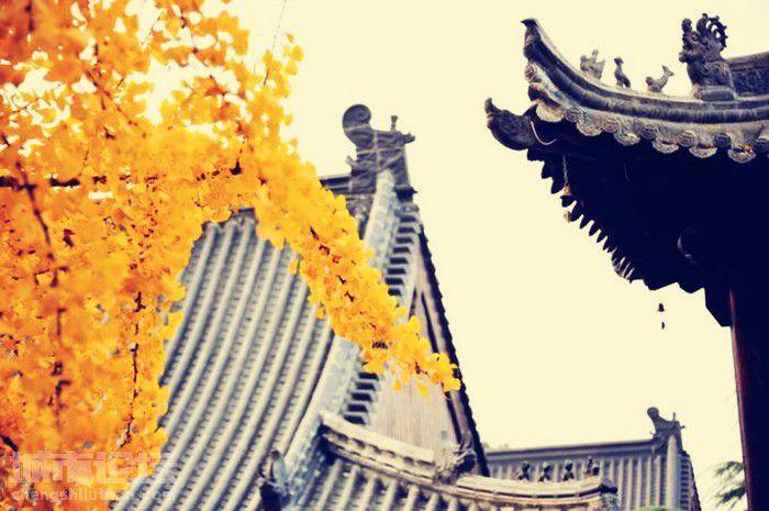 一年好景君须记 最是橙黄橘绿时——立冬时节安阳大西南旅游区风光