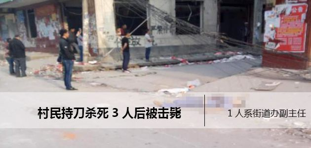 河南一村民持刀杀人被击毙  1人系街道办副主任